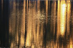 Ποταμός αντανάκλασης και δέντρο σκιών στο όμορφο ηλιοβασίλεμα νερού Στοκ φωτογραφία με δικαίωμα ελεύθερης χρήσης