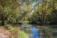 ποταμός αντανάκλασης πάρκων γεφυρών για πεζούς θάμνων Στοκ φωτογραφίες με δικαίωμα ελεύθερης χρήσης