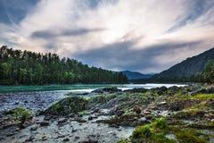 ποταμός Αυγούστου altai του 2006 katun Βουνό Altai, νότια Σιβηρία, Ρωσία στοκ εικόνα