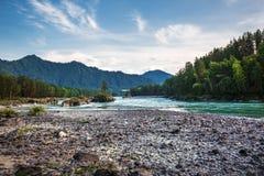 ποταμός Αυγούστου altai του 2006 katun Βουνό Altai, νότια Σιβηρία, Ρωσία στοκ φωτογραφία