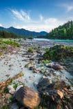 ποταμός Αυγούστου altai του 2006 katun Βουνό Altai, νότια Σιβηρία, Ρωσία στοκ φωτογραφίες με δικαίωμα ελεύθερης χρήσης