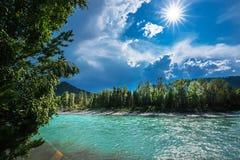 ποταμός Αυγούστου altai του 2006 katun Τοπίο ποταμών του Altai στοκ εικόνες με δικαίωμα ελεύθερης χρήσης