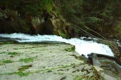 Ποταμός βουνών και λίμνη στο δάσος, ίχνη θερινής πεζοπορίας, βράζοντας νερά Στοκ Εικόνες