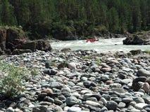 Ποταμός βουνών με τα ορμητικά σημεία ποταμού στοκ εικόνα
