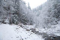 Ποταμός βουνών με την ξύλινη γέφυρα στο χειμερινό δάσος βουνών με τα χιονισμένα δέντρα και τις χιονοπτώσεις Στοκ Εικόνες