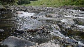 Ποταμός βουνών με τις πέτρες με το διαφανές νερό φιλμ μικρού μήκους
