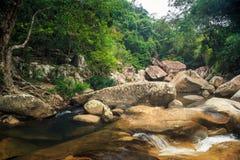 Ποταμός βουνών με τους καταρράκτες μεταξύ του τροπικού ξύλου στοκ εικόνα με δικαίωμα ελεύθερης χρήσης