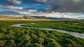 Ποταμός βουνών μια νεφελώδη ημέρα Timelapse 4K φιλμ μικρού μήκους