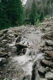 Ποταμός βουνών που ρέει στη σειρά Fagaras βουνών Στοκ Εικόνες