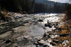 Ποταμός βουνών σε ένα δάσος Στοκ φωτογραφία με δικαίωμα ελεύθερης χρήσης