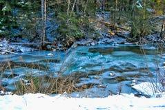 Ποταμός βουνών σε ένα χειμερινό δάσος Στοκ φωτογραφίες με δικαίωμα ελεύθερης χρήσης