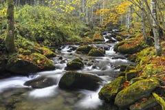 Ποταμός βουνών στα τέλη του φθινοπώρου Στοκ εικόνα με δικαίωμα ελεύθερης χρήσης