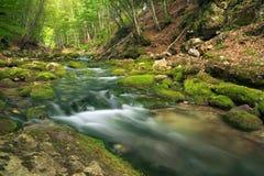 Ποταμός βουνών στην έκταση δασών και βουνών. Στοκ Φωτογραφία
