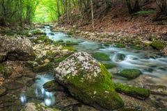 Ποταμός βουνών στην έκταση δασών και βουνών Στοκ εικόνα με δικαίωμα ελεύθερης χρήσης