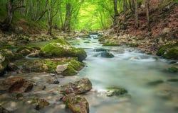 Ποταμός βουνών στην έκταση δασών και βουνών Στοκ Εικόνες