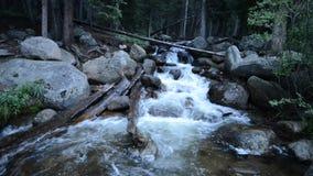 Ποταμός βουνών στην αγριότητα του Κολοράντο απόθεμα βίντεο