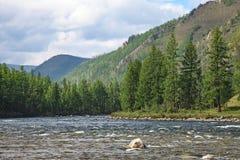 Ποταμός βουνών στο δάσος και το υπόβαθρο βουνών Στοκ φωτογραφία με δικαίωμα ελεύθερης χρήσης