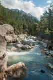 Ποταμός βουνών στο πυκνό δάσος, Τουρκία στοκ εικόνες