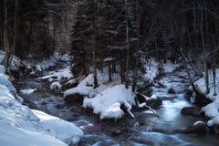 Ποταμός βουνών στο χειμερινό δάσος Στοκ Εικόνες
