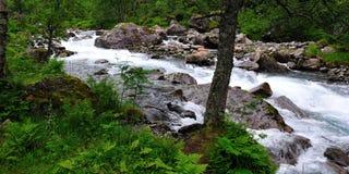 Ποταμός βουνών στο Trollstigen Στοκ Εικόνες