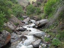 ποταμός βουνών τεμαχίων που τρέχει τις μικρές πέτρες Στοκ Εικόνα