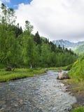 Ποταμός βουνών τοπίων με τα δέντρα λιβαδιών και σημύδων Στοκ φωτογραφία με δικαίωμα ελεύθερης χρήσης
