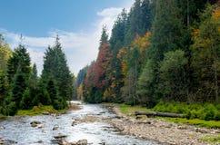 Ποταμός βουνών το φθινόπωρο Στοκ Εικόνες