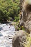 Ποταμός βουνών υπαίθρια Στοκ Φωτογραφία