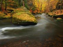 Ποταμός βουνών φθινοπώρου με τα θολωμένα κύματα, φρέσκες πράσινες mossy πέτρες, ζωηρόχρωμη πτώση Στοκ Φωτογραφία
