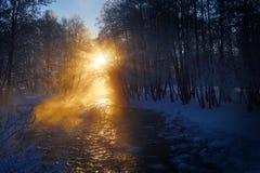 Ποταμός βουνών χειμερινό ομιχλώδες Στοκ Εικόνες