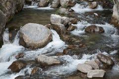 Ποταμός βουνών, όμορφο νερό κοπαδιών βουνών Ορμητικά σημεία ποταμού νερού Ποταμός βουνών, δασικός πράσινος γρήγορος καταρράκτης Στοκ εικόνες με δικαίωμα ελεύθερης χρήσης