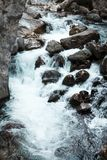 Ποταμός βουνών, όμορφο νερό κοπαδιών βουνών Ορμητικά σημεία ποταμού νερού Ποταμός βουνών, δασικός πράσινος γρήγορος καταρράκτης Στοκ φωτογραφίες με δικαίωμα ελεύθερης χρήσης