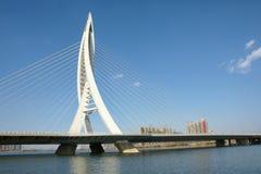 ποταμός γεφυρών στοκ εικόνες
