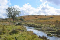 Ποταμός δυτικών βελών κοντά σε δύο γέφυρες, εθνικό πάρκο Dartmoor, Devon, Αγγλία στοκ φωτογραφία με δικαίωμα ελεύθερης χρήσης