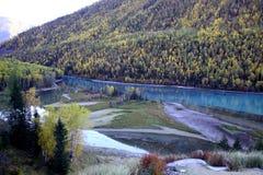 Ποταμός εκτός από το δάσος Στοκ Φωτογραφίες