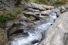 Ποταμός ενός δάσους Στοκ εικόνα με δικαίωμα ελεύθερης χρήσης