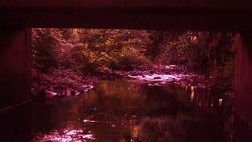 Ποταμός κάτω από τη γέφυρα στο ηλιοβασίλεμα φιλμ μικρού μήκους