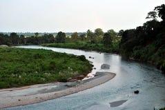 Ποταμός και ζούγκλα Στοκ εικόνες με δικαίωμα ελεύθερης χρήσης