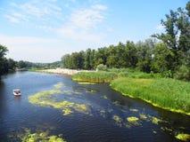 Ποταμός και καταμαράν Στοκ Εικόνες