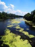 ποταμός και ο μπλε ουρανός Στοκ φωτογραφία με δικαίωμα ελεύθερης χρήσης