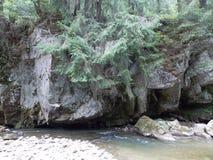 Ποταμός και παλαιός βράχος στο Καρπάθιο βουνό Στοκ φωτογραφία με δικαίωμα ελεύθερης χρήσης