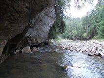 Ποταμός και παλαιός βράχος στο Καρπάθιο βουνό Στοκ Φωτογραφίες