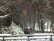 Ποταμός και χιόνι χειμερινού βραδιού στο πάρκο στοκ εικόνα