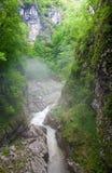ποταμός κολπίσκου στοκ φωτογραφία