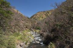 Ποταμός Λα Candelaria, βουνά στη Κόστα Ρίκα Στοκ Εικόνες