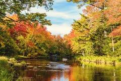 Ποταμός Μέρσεϋ το φθινόπωρο Στοκ Εικόνα