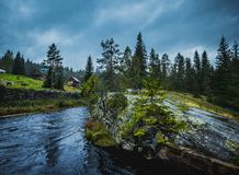 Ποταμός μεταξύ του δάσους, της χλόης και των πετρών στην Καρελία στο καλοκαίρι στοκ εικόνα με δικαίωμα ελεύθερης χρήσης
