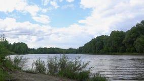 Ποταμός με το αριστερό στις τράπεζες φιλμ μικρού μήκους