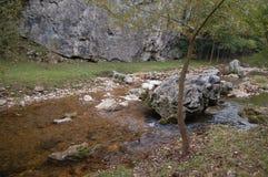 ποταμός μικρός στοκ εικόνες