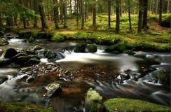 ποταμός μικρός Στοκ φωτογραφίες με δικαίωμα ελεύθερης χρήσης